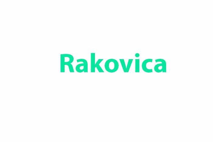 Otkup telefona Rakovica